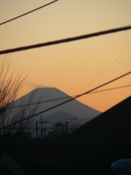 fujipotaya.JPG